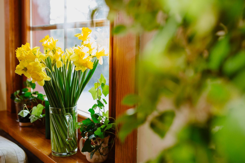 Kwiaty jako prezent?