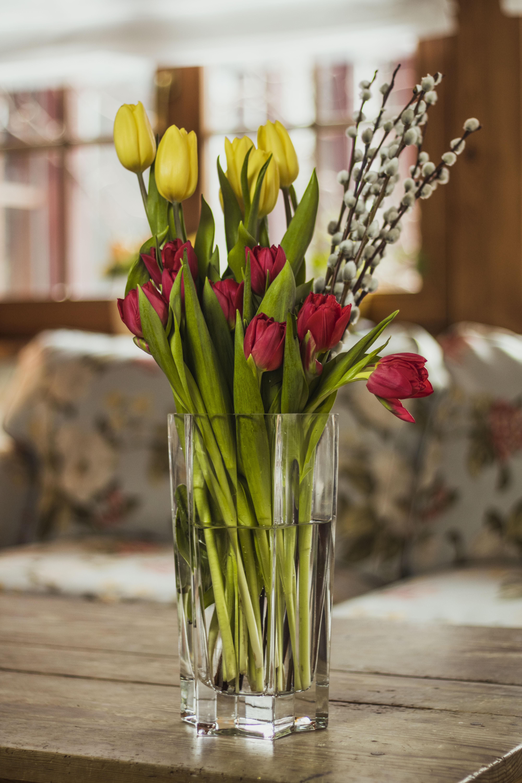 7c36d556431668 Kwiaty to nadal idealny prezent na Dzień Kobiet! Tulipany mają już nawet  sensowne ceny, więc można poszaleć. ALE! Najlepsze kwiaty na prezent to  takie w ...