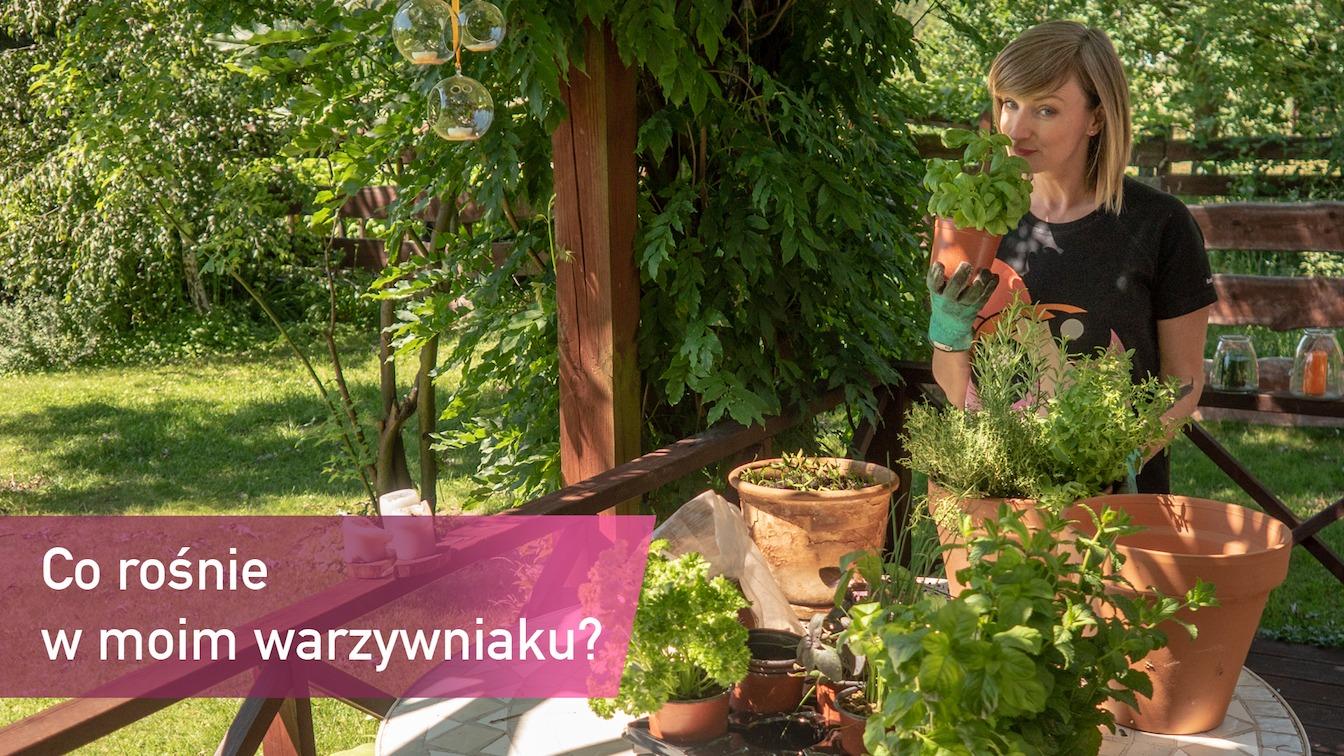 corosniewwarzywniaku