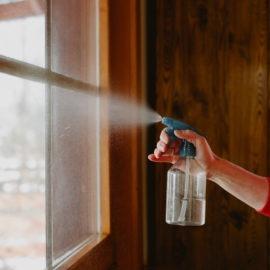 ula pedantula mycie okien