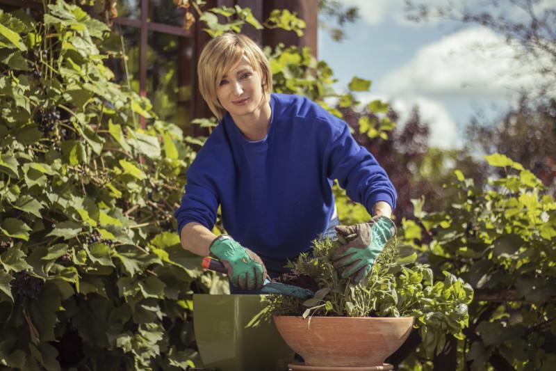 Jak sadzić zioła? Ula Chincz sadzi zioła