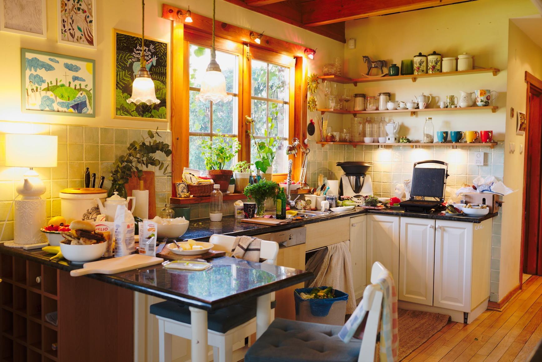 Ula Pedantula kuchnia przed