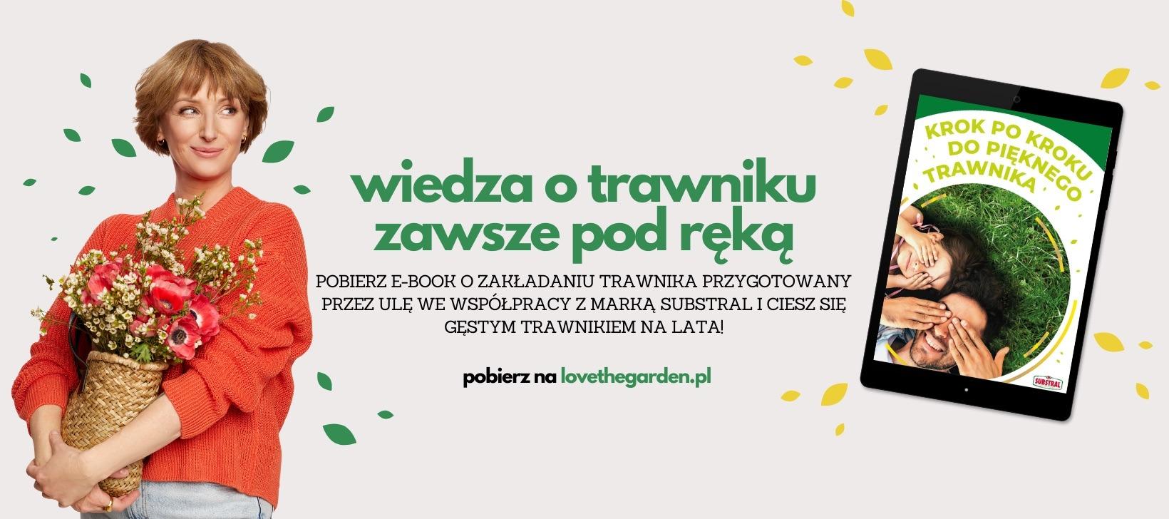 Ula Pedantula ebook o trawniku substral